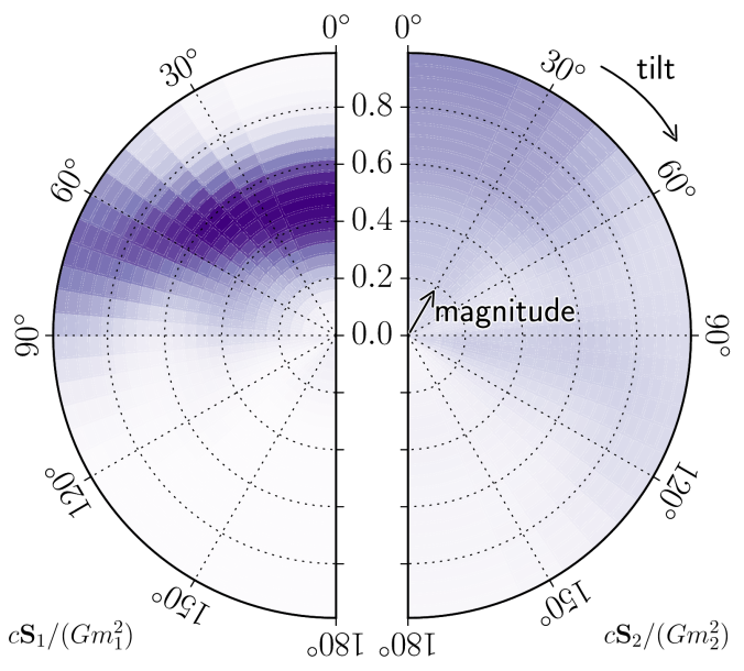 Orientation and magnitudes of the two spins
