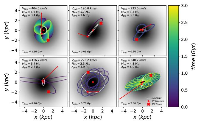 Post-supernova orbits in model NGC 4993