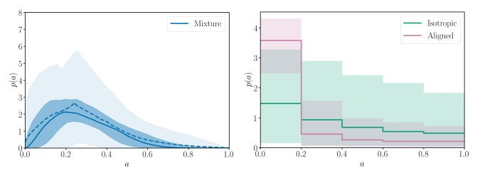 Parametric and binned spin magnitude distributions